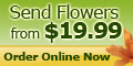 The Flower Factory USA Coupons + 10% cashback